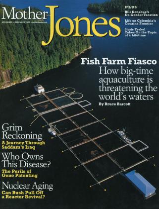 Mother Jones November/December 2001 Issue