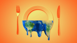 """Eating in Climate Chaos With Mother Jones' Podcast, """"Bite"""""""