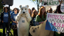 A person in a polar bear suit mimes crying at a pro-Arctic wildlife rally.