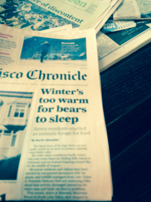 SF Chron front page