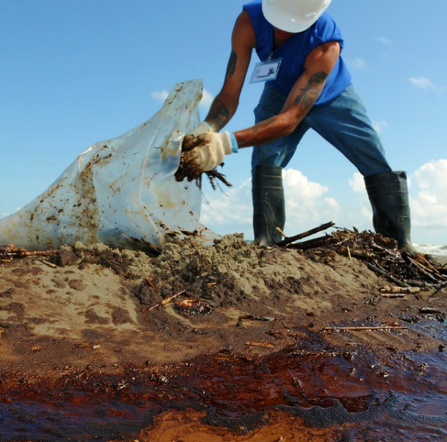 A worker cleans up oily waste on Elmer's Island, LA,  21 May 2010: Photo by Petty Officer 3rd Class Patrick Kelley, US Coast Guard, via Flickr