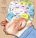 What's inside Glenn Beck's brain?