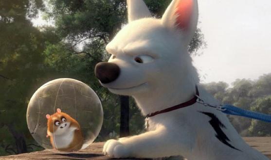 The hamster represents democracy. IMDB